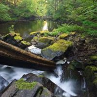 Black Creek Corridor - Esopus Ulster County