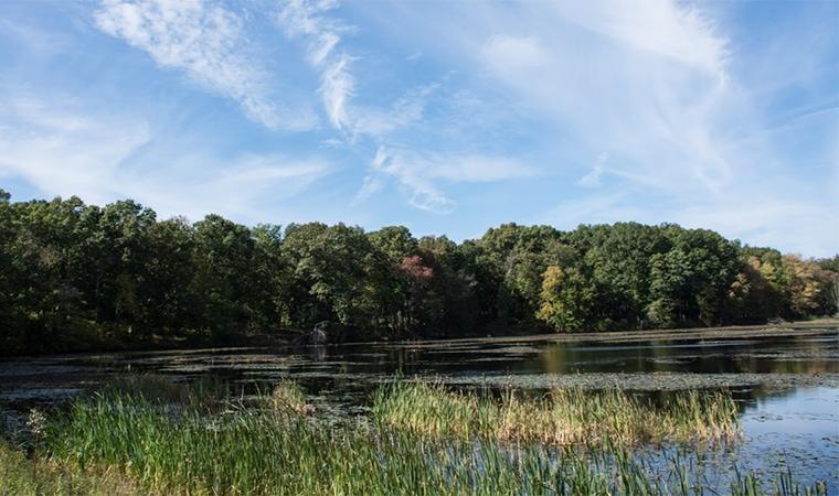 Lake Walton