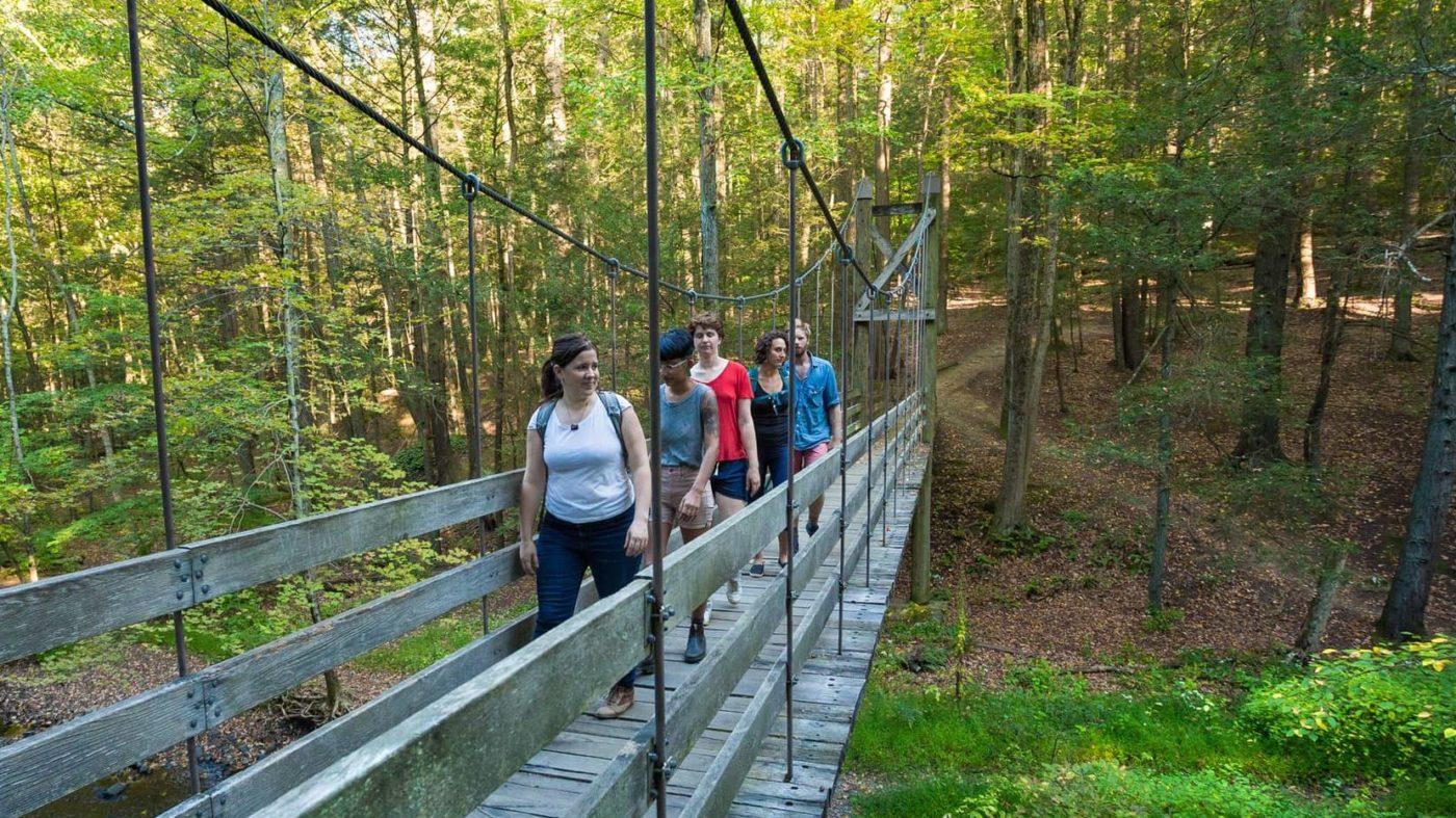 Suspension Bridge at Black Creek