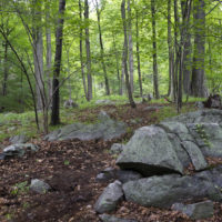 Doris Duke Trail