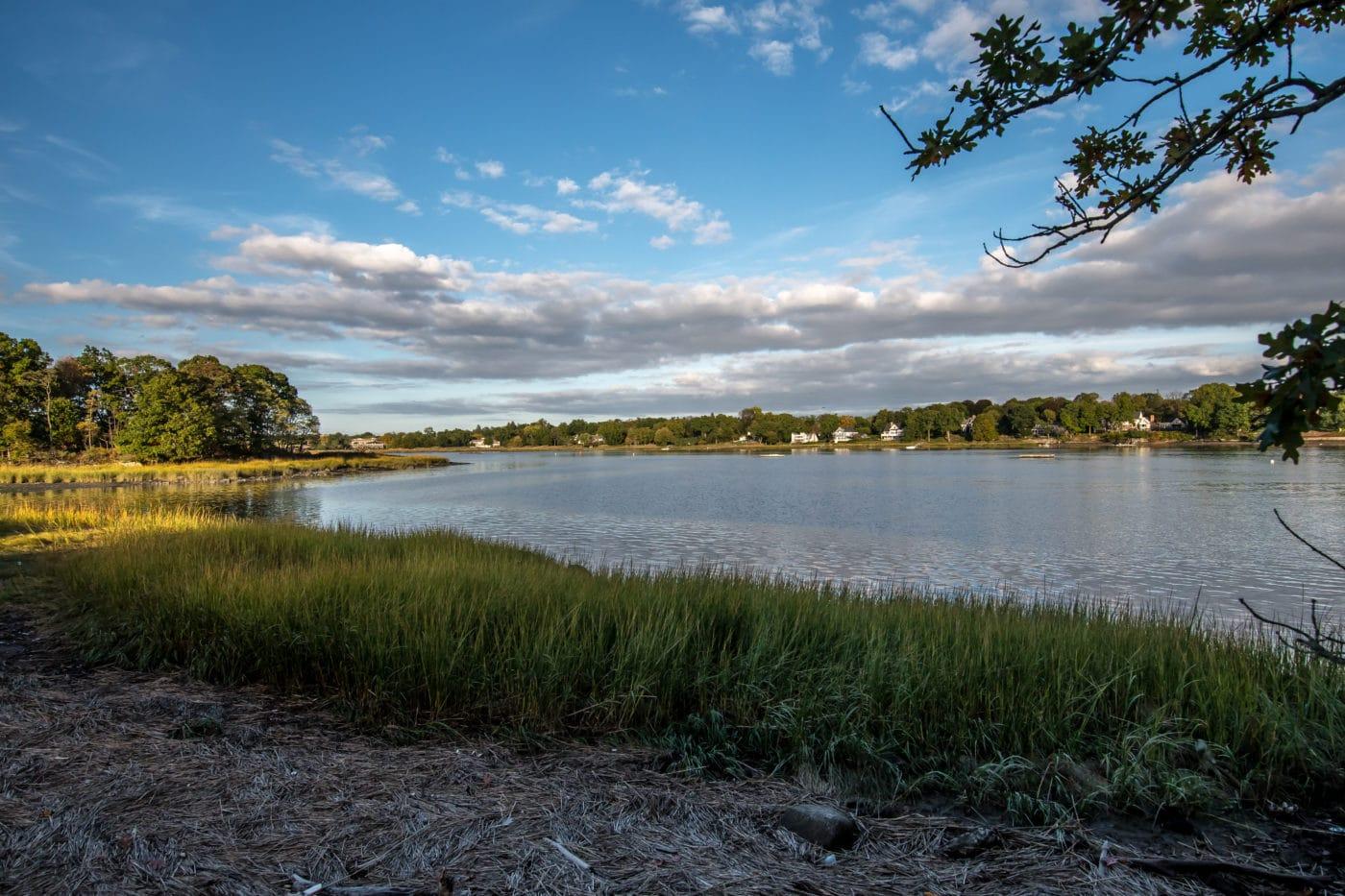 Marshland Conservancy