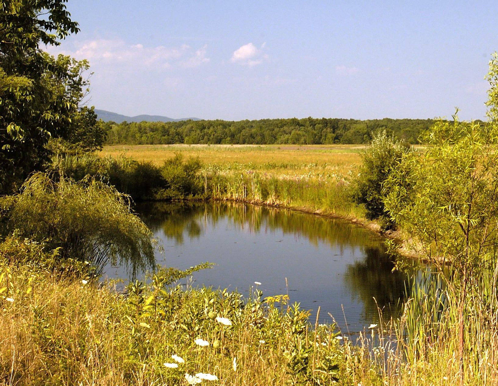 Shawagunk Grasslands National Wildlife Refuge