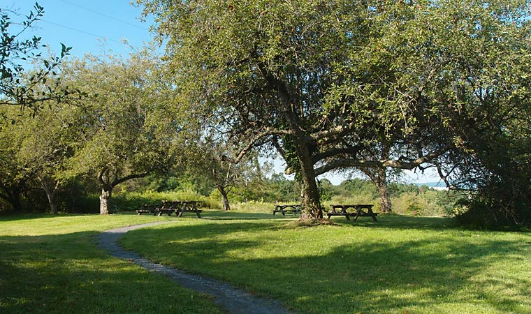 Peach Hill Park