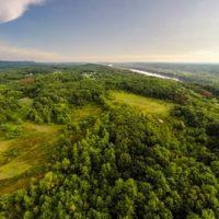 Ridgetop Forest