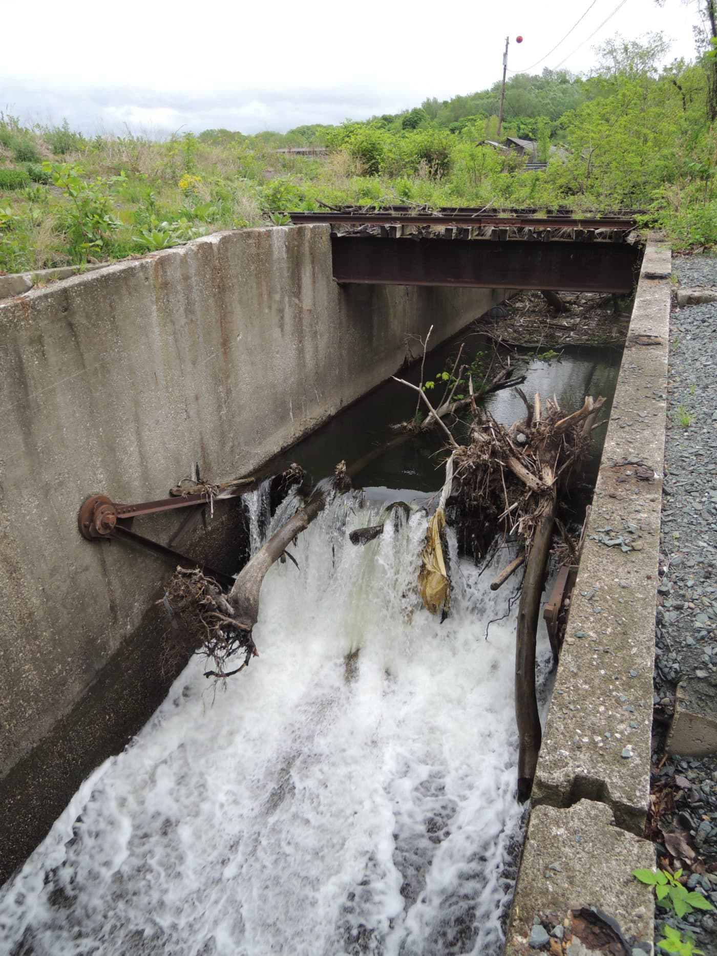 Wynants Kill First Dam