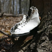 Ice Skate in Tree